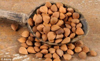 Laetrile / Vitamin B17/ Amygdalin/Apricot Kernels