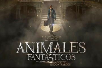trailer animales fantasticos pelicula