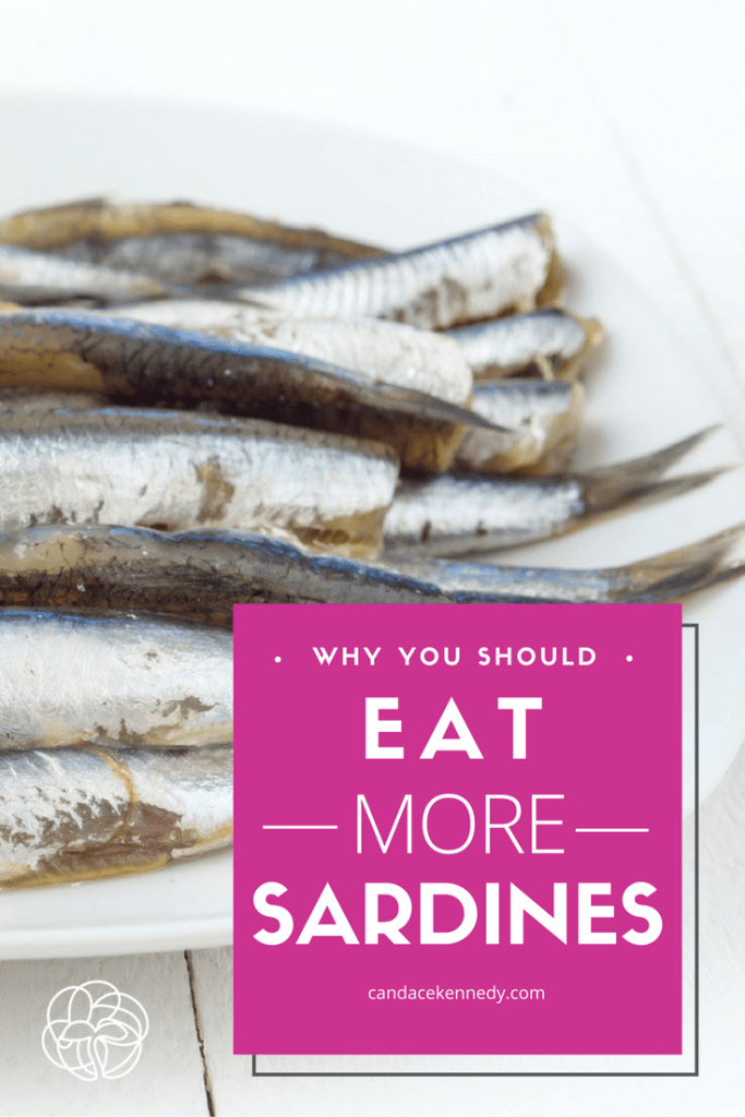 sardine health benefits
