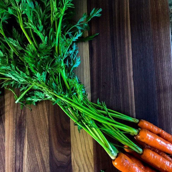 Carrot Top Pesto | Paleo, Low-carb, Whole30 | The Real Food Effect by Candace Kennedy, Holistic Nutritionist