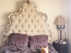 My gorgeous upholstered bed with mirrored trim is on sale at the Neiman Marcus Decor and Rugs Sale going on now for a very limited time! Hooker Furniture Bristol Upholstered Mirrored Bed Neiman Marcus Decor and Rugs Sale Candace Rose Blogger