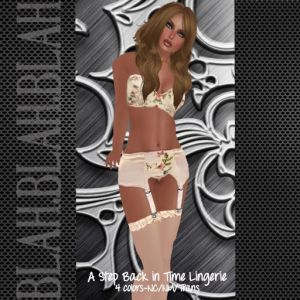 blah.BLAH.blah Step Back In Time Vintage Lingerie