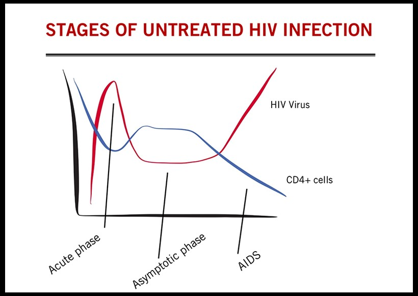 Stages of HIV Infection CANFAR
