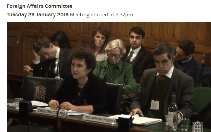 Cristina Cortes Cristina Cortes Ceo Of Canning House Gives Evidence To The