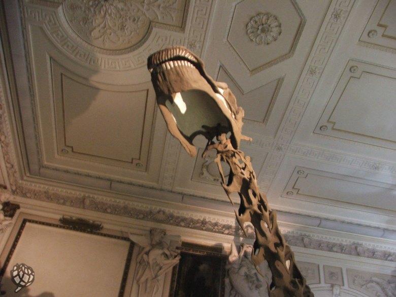 museu-viena-detalhe-dino