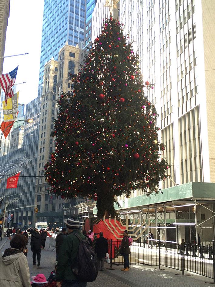 Natal-em-New-York13