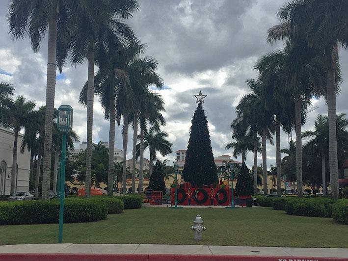 Fort-Lauderdale-bate-volta25