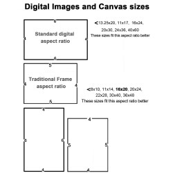 Small Crop Of Standard Canvas Sizes