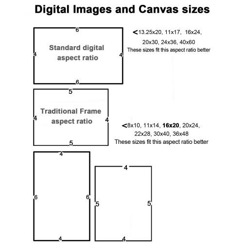 Medium Crop Of Standard Canvas Sizes