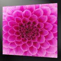 ABSTRACT PINK DAHLIA FLOWER MODERN WALL ART CANVAS PRINT ...