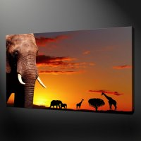 AFRICAN ANIMALS SUNSET CANVAS WALL ART PICTURES PRINTS 20 ...