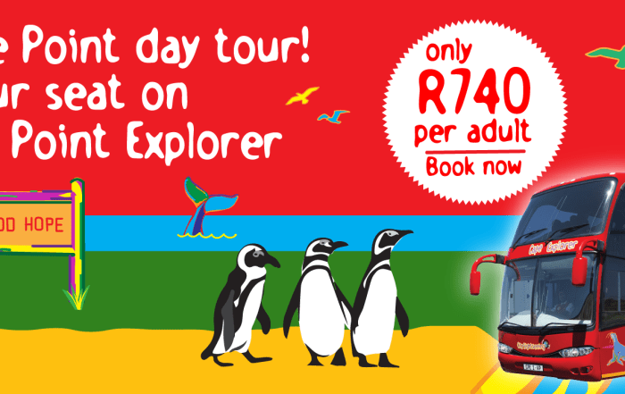 CSS_Cape Point Explorer_Banner-01