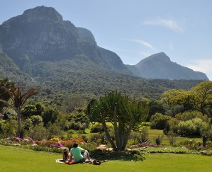 KIRSTENBOSCH-picnic-vygie-beds-spring-picnickers-Sept-ALN-173