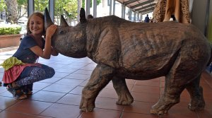 With a rhino