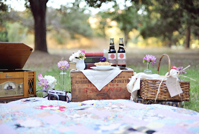 Cape Town Wedding Engagement Shoot  - Picnic
