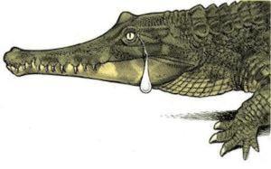 1Lacrimi de crocodil