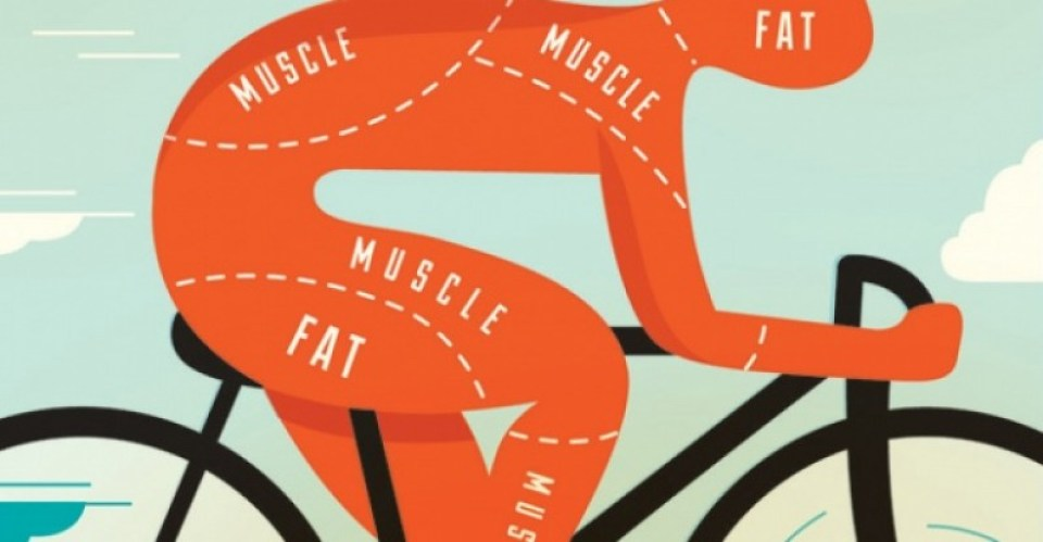 cycling-for-weight-loss