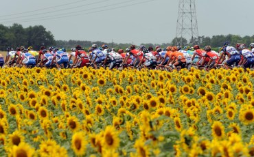 THE PELOTON ON STAGE SIX OF THE TOUR DE FRANCE