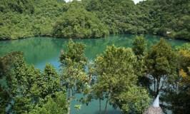 sohoton cove, bucas grande islands, surigao del norte