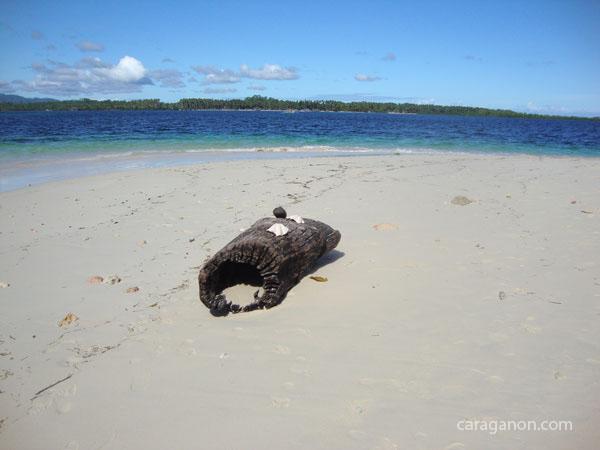 britania islands, surigao del sur