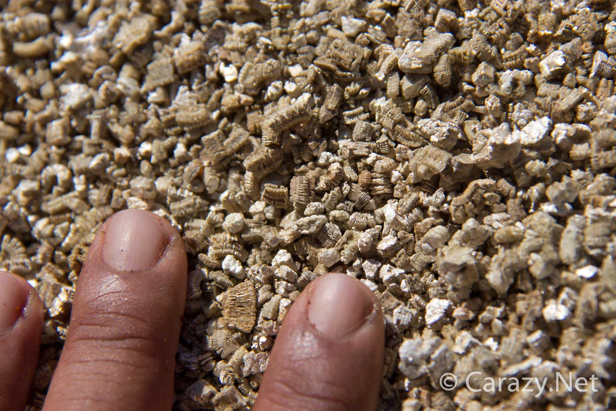 Fullsize Of Vermiculite Vs Perlite