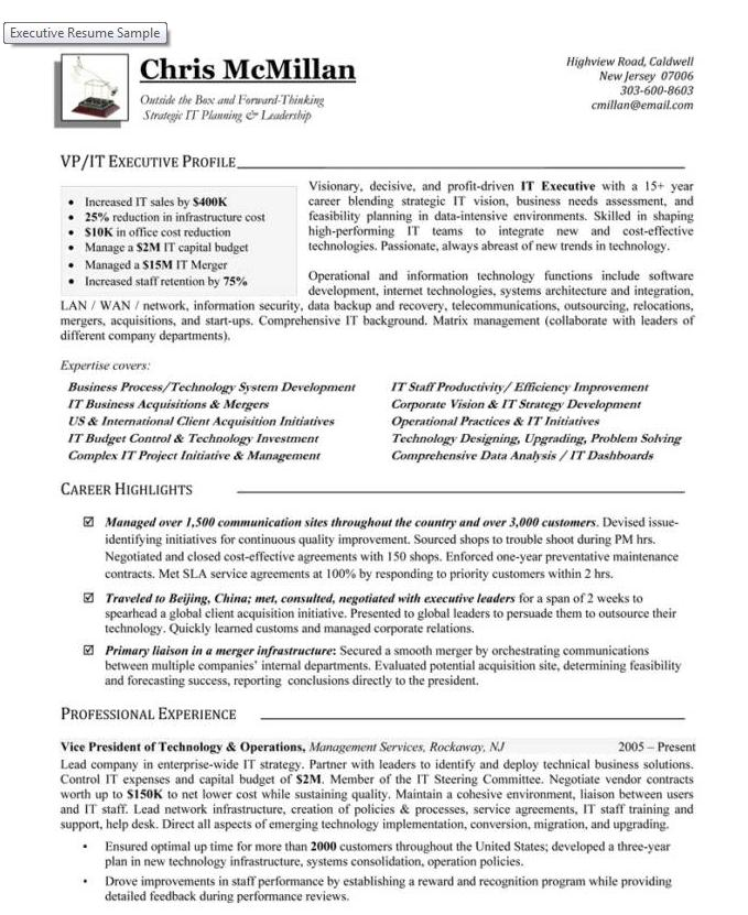 sample vp of technology resume