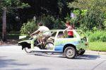 Les voitures du futur seront des voitures propres