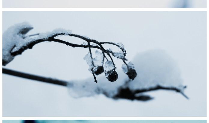 2011-12-10-Fototriss2