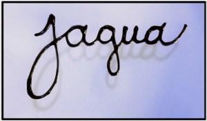 jagua-image-copy