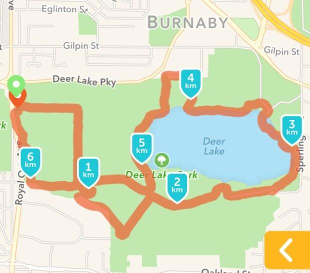 21. Deer Lake map