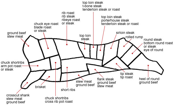 diagram of beef brisket