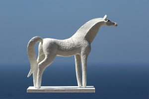 Carol Hawyward Fell - mare with bridal saddle