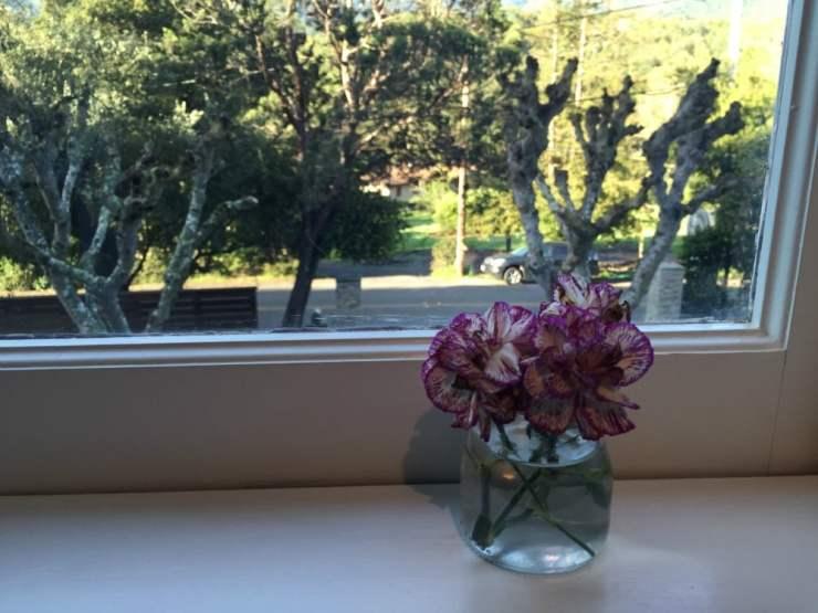 Sonoma in the sunshine  Carol Cassara -> Kuchnia Sara Sonoma
