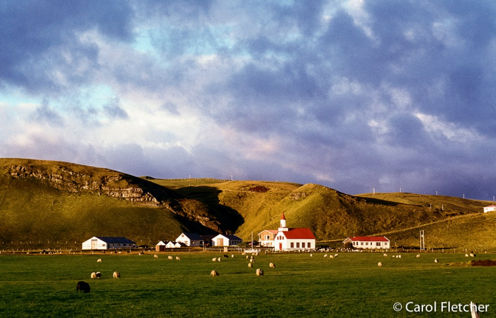Beautiful light, south coast of Iceland