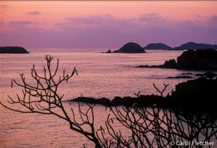 Peace in pink and purple - Ixtapa