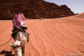View from a camel in Wadi Rum