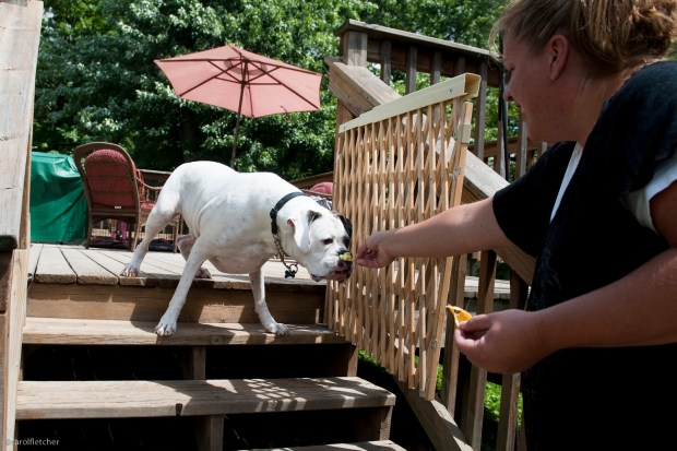 Bribery still won't get Rook down the stairs