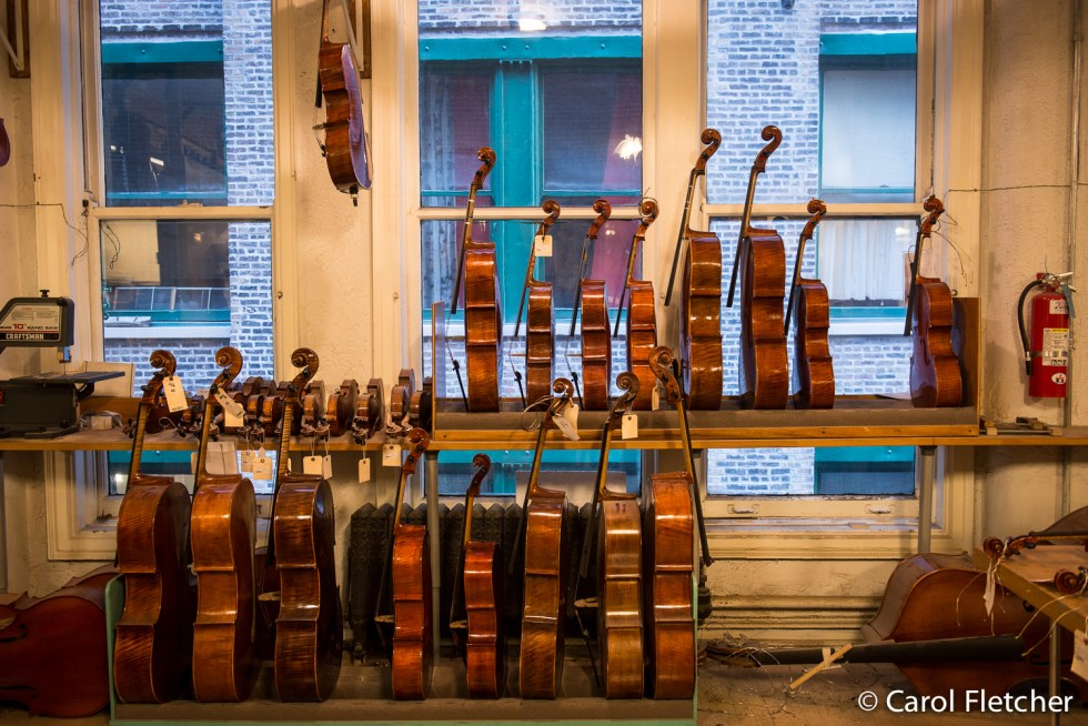 violins cellos whlee stringed instrument makers