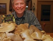Reader photo of an oyster mushroom forage