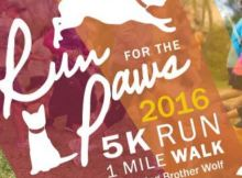 Run-for-the-Paws-2016