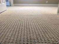 Carpet Cleaning   Miami & Broward County Florida
