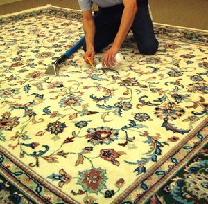 Cleaning Area Rug Cleaning