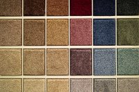 What's New in Flooring - Carpet for Less - Michigans Best ...
