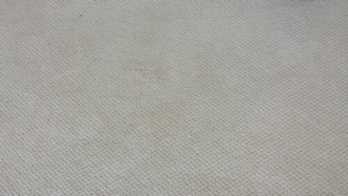 Repaired Patterned Plush Carpeting In Stone Harbor Nj