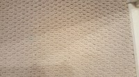 Repaired Bleach spot in Patterned Berber Carpeting at 9600 ...