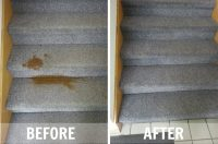 Carpet Repair | White Knight Carpet Rescue, Inc