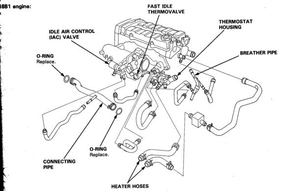 2005 Acura Tsx Engine Diagram Electronic Schematics collections
