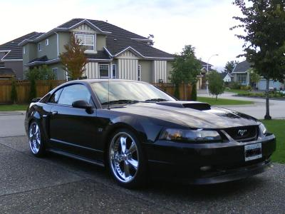 Parm1974 2002 Ford Mustang Specs, Photos, Modification Info at CarDomain