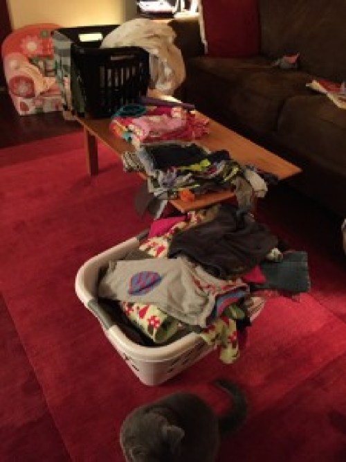 piles of laundry in my living room