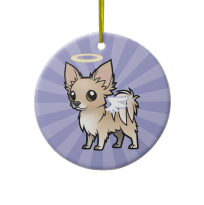 Angel Long Haired Fawn Chihuahua